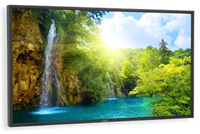 "52"" NEC P521 LCD Display"